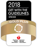 2018 Gold Plus Stroke Award