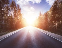 A road surrounded by trees with the sun on the horizon