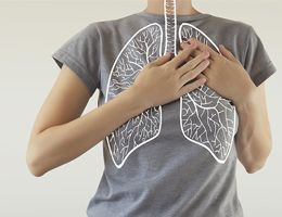 A drawing of lungs superimposed on the torso of someone wearing a gray T-shirt.
