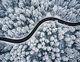 A winding road through a snowy forest.