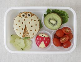 Child's lunch container with food sliced and decorated to make fun shapes, like ladybugs and flowers.