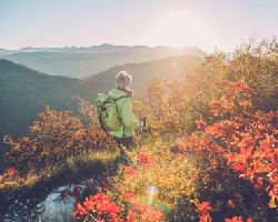 A hiker on a nature trail looks over a mountain vista.