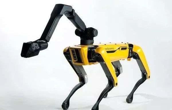 资料:3个四足机器人 Potmini、Laikago 和 Anymal