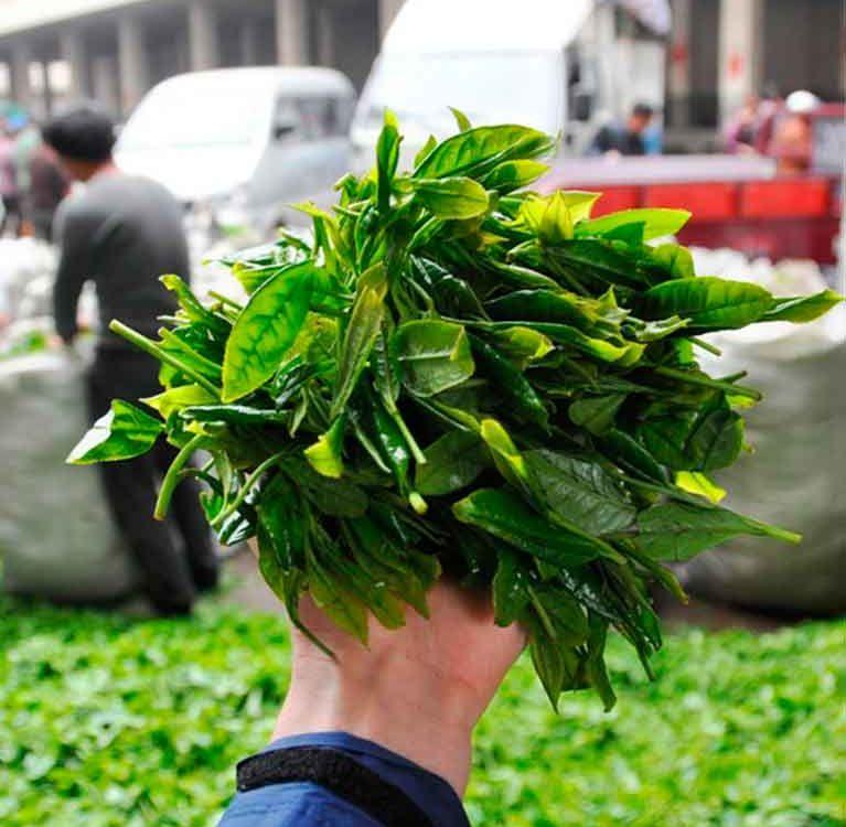 Необычный рынок чая в городе Фудин