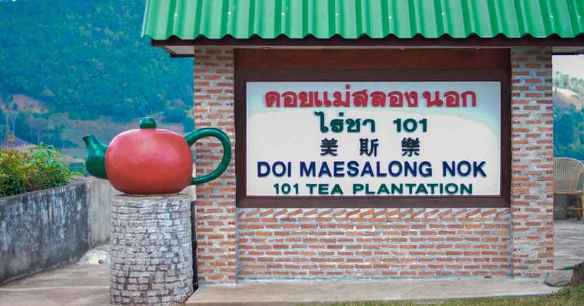 Джон Додд и король Пхумипон Адульядет. Два человека, повлиявших на чай