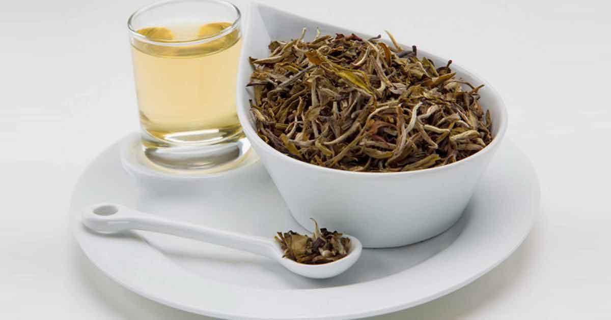 Белый чай (Чай по четвергам с Шумаковым)