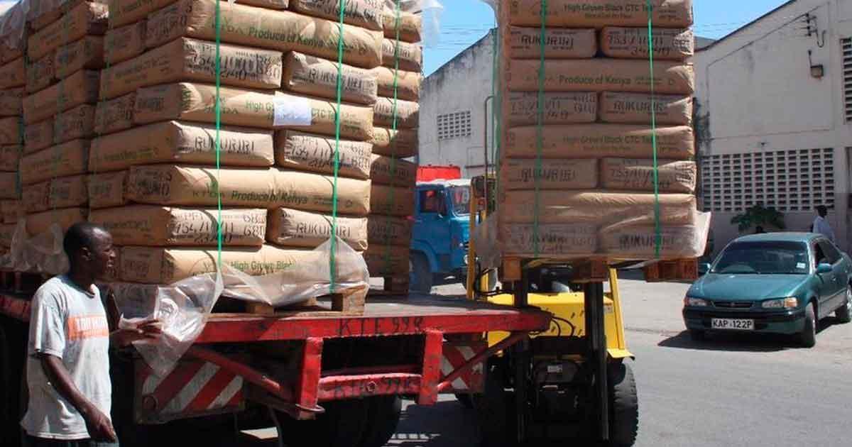 В первом квартале Кения экспортировала чая на 25 млн кг больше
