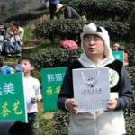 Panda_Dung