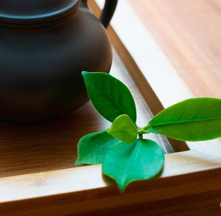 Азбука чайного шарлатана