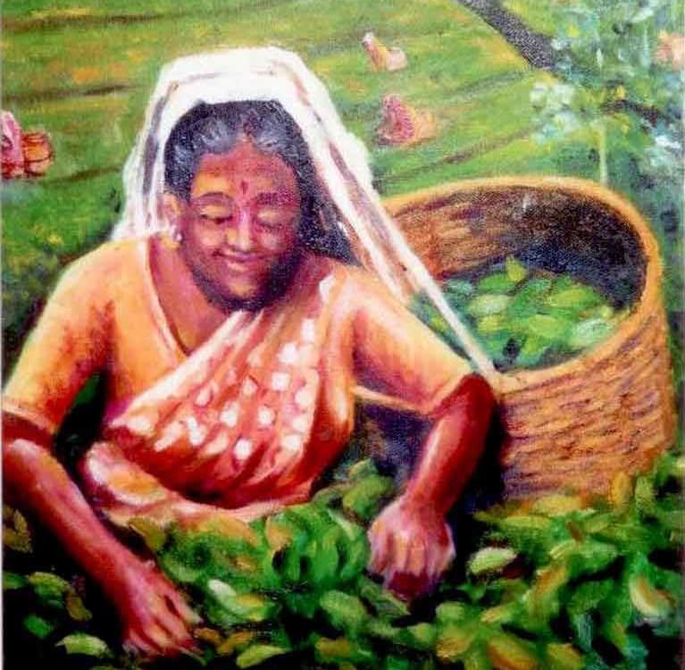 Чайная история Шри-Ланки