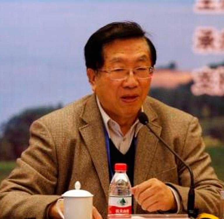 Чэнь Цзун Мао – единственный* академик