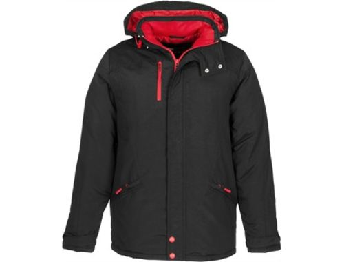 https://res.cloudinary.com/dpprkard7/c_scale,w_500/amrod/mens-astro-jacket-red.jpg