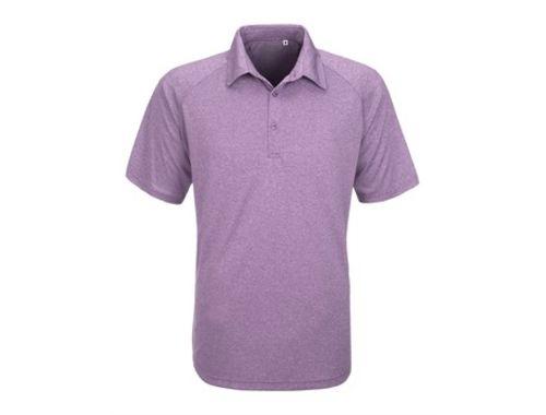 https://res.cloudinary.com/dpprkard7/c_scale,w_500/amrod/mens-triumph-golf-shirt-purple.jpg