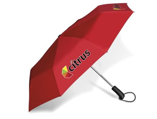 https://res.cloudinary.com/dpprkard7/c_scale,w_500/amrod/whimsical-compact-umbrella-red.jpg
