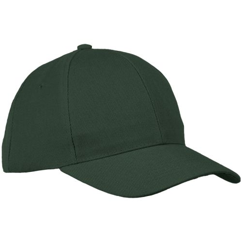 https://res.cloudinary.com/dpprkard7/c_scale,w_500/barron-clothing/6-panel-raven-cap-bottle.jpg