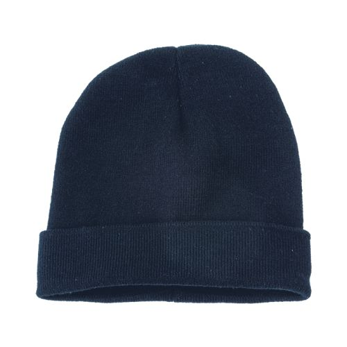 https://res.cloudinary.com/dpprkard7/c_scale,w_500/barron-clothing/ice-knitted-beanie-navy.jpg