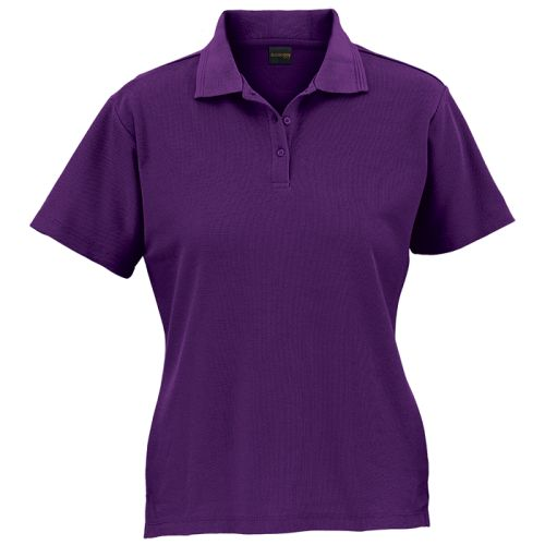 https://res.cloudinary.com/dpprkard7/c_scale,w_500/barron-clothing/ladies-175g-barron-pique-knit-golfer-purple.jpg