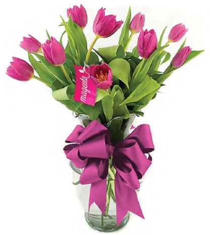 Encanto - Arreglo de 10 tulipanes