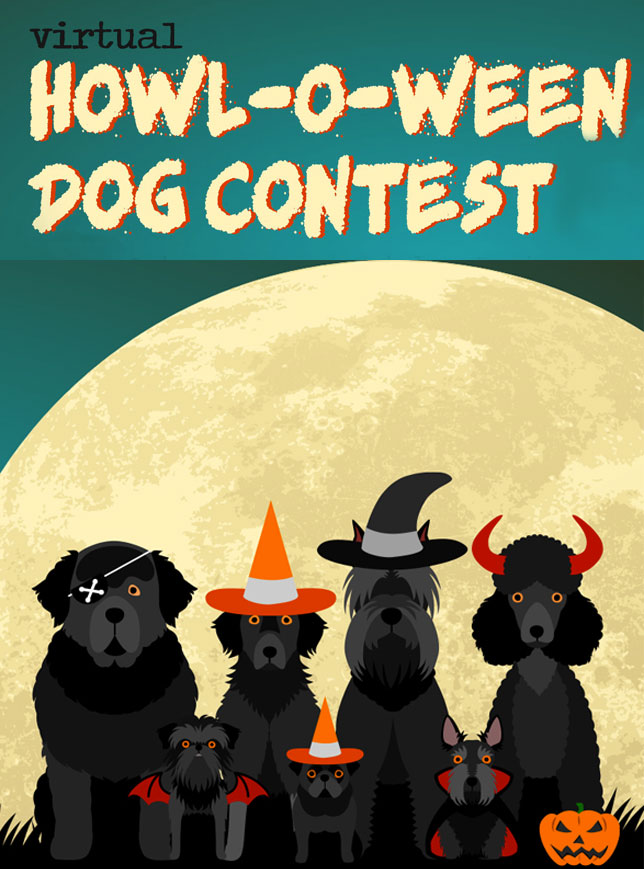 Howl-O-Ween Dog Contest