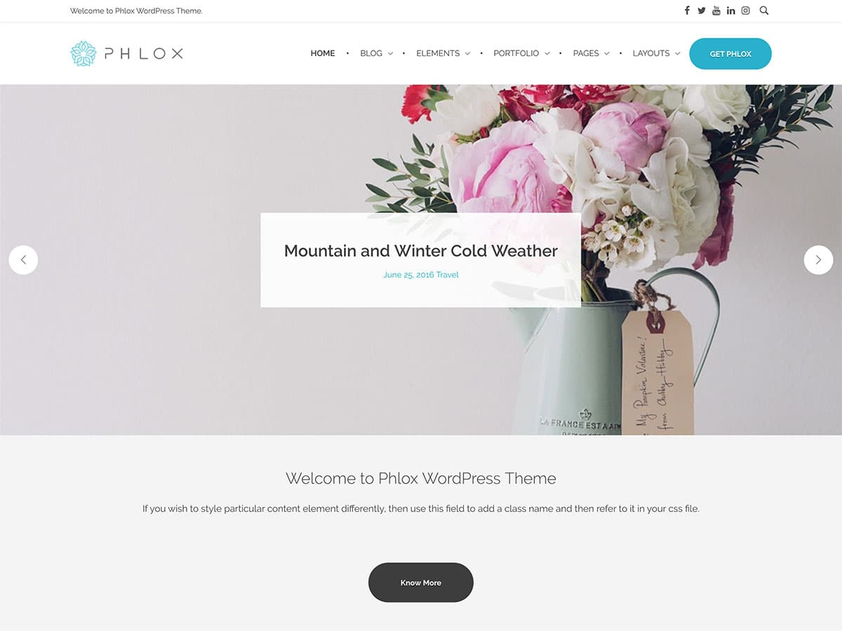 Phlox Tema WordPress