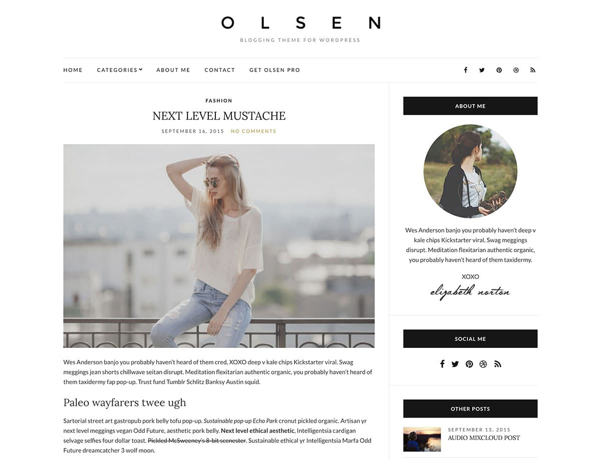 Olsen Light Theme