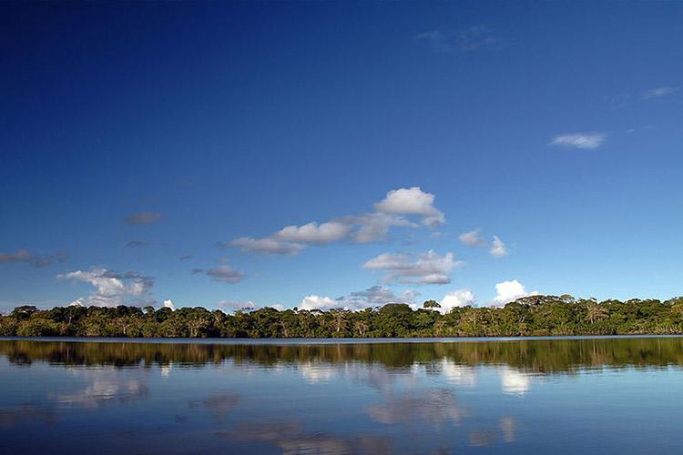 Anakonda Amazon's 4-Day Itinerary Day Two - River Views.