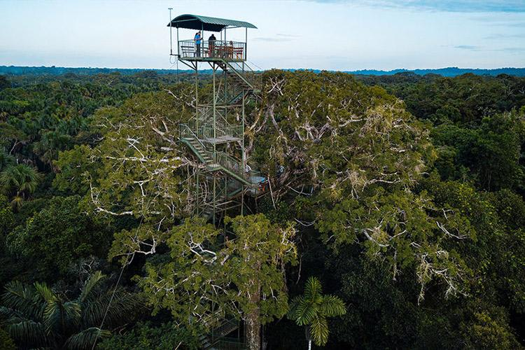 Anakonda Amazon's 5-Day Itinerary Day Four - Jungle Observation Tower.