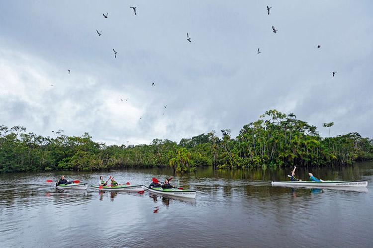 Anakonda Amazon's 8-Day Itinerary Day Six - Kayaking on the Amazon River.