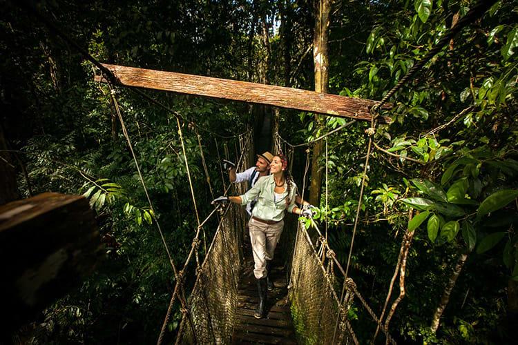 Delfin I Amazon's 4-Day Itinerary Day Two - Canopy Bridge Jungle Excursion.