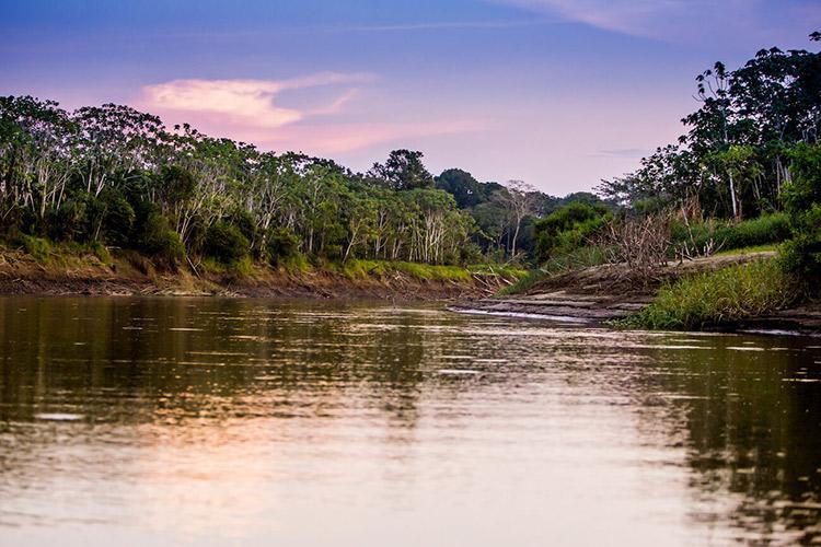 Delfin III Amazon's 5-Day Itinerary Day Three - Pacaya Samiria National Reserve.