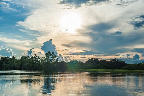 Aria Amazon's 4-Day Itinerary Day Three - Amazon River Views.