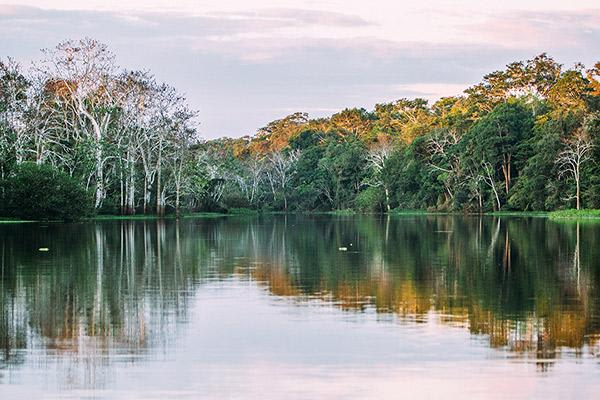 Aqua Nera's 8-Day Itinerary Day Three - Amazon River Views.