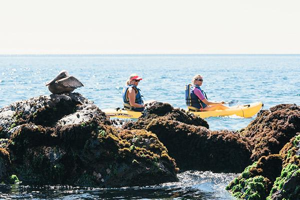 Origin's 8-Day Itinerary B Day Five - Kayaking in the Galapagos.