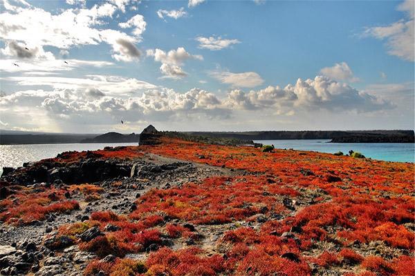 Cormorant I's 8-Day Itinerary A Day Three - Island Landscapes.