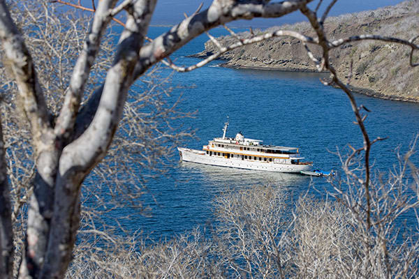 Grace Yacht's Western & Central Following Darwin's Trail 8-Day Itinerary Day Four - Tagus Cove.