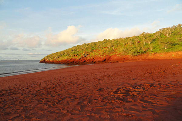 Camila's 5-Day Itinerary Day Two - Rabida Island.