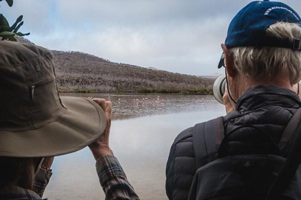 Origin's 15-Day Itinerary 'A+B' Day Eight - Flamingo Sighting.