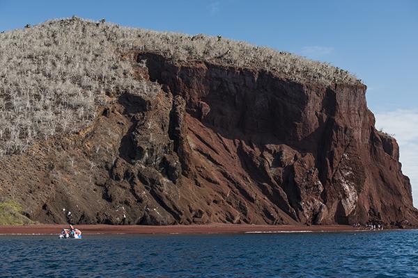 Treasure of the Galapagos 7-Day 'C' Itinerary Day Six - Rabida Island.