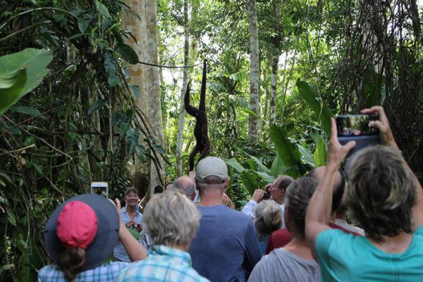 Spondias 8-Day Itinerary Day Seven - Jungle Walk Excursion.