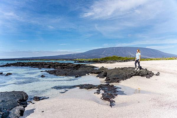 Stella Maris' 8-Day A Itinerary Day Two - Stunning Beach Walk.