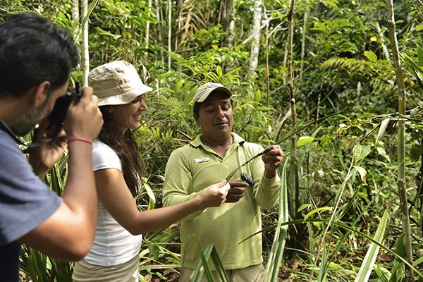 Iberostar's 5-Day Cruise Itinerary Day Two - Guided Jungle Trail Walks.