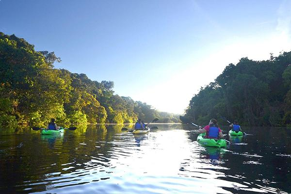 Tucano's 7-Day Cruise Itinerary Day Two - Kayaking in the Amazon Rainforest.