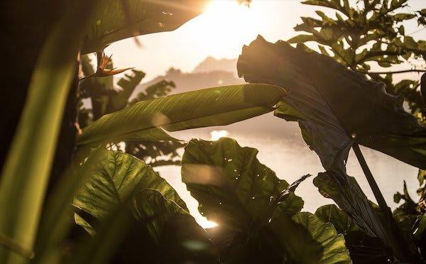 Anouvong's 8-Day Laotian Serendipity Day Six - Sunset
