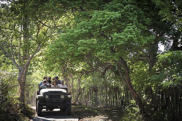 Aqua Blu's 8-Day Komodo to Bali Day Eight - Excursion on Komodo Island