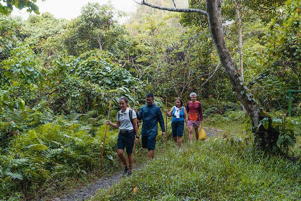 Aqua Blu's 8-Day Bali to Komodo - Day Six - Jungle Trekking