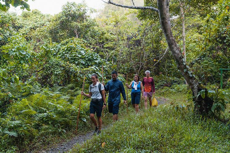 Aqua Blu's 13-Day Spice Island to Flores - Day Twelve - Jungle Trekking