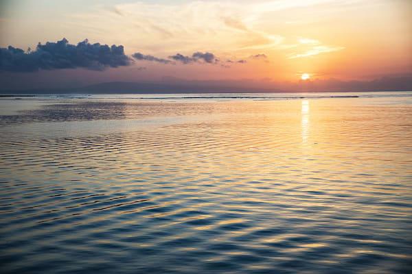 Aqua Blu's 13-Day Spice Island to Raja Ampat - Day Six - Sunset Sceneray