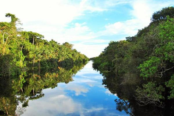Jacaré-Tinga's 4-Day Apuaú Wild Rio Negro Cruise Day Three - Amazon River Views.