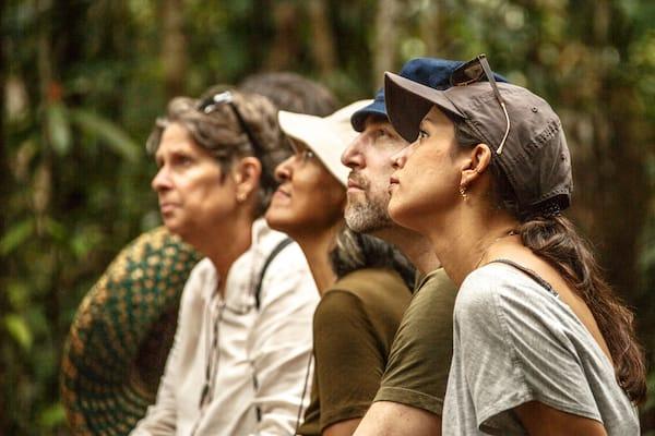 Kumai's 3-Day Tanjung Puting & Camp Leakey - Day Two - Guests Watching Orangutans