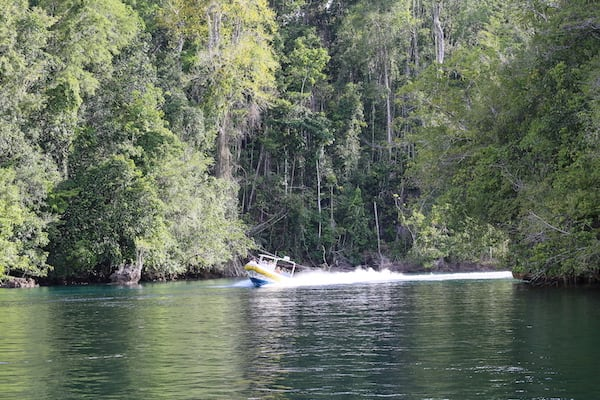 Lamima's 11-Day Greater Raja Ampat - Day Ten - Excursion on Tender